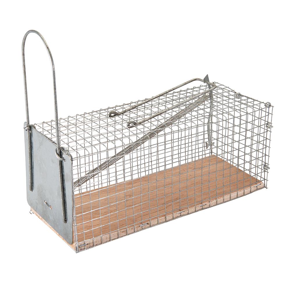 pi ge souris cage grillag e. Black Bedroom Furniture Sets. Home Design Ideas